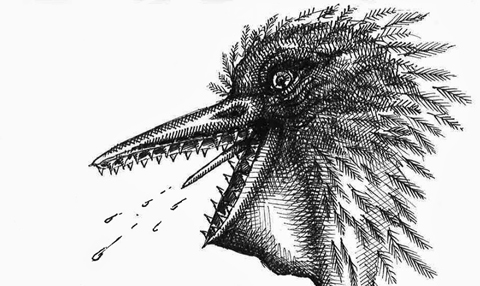 Spitting pelican pen and ink drawing taken from the exquisite corpse game Exquisite Godzilla